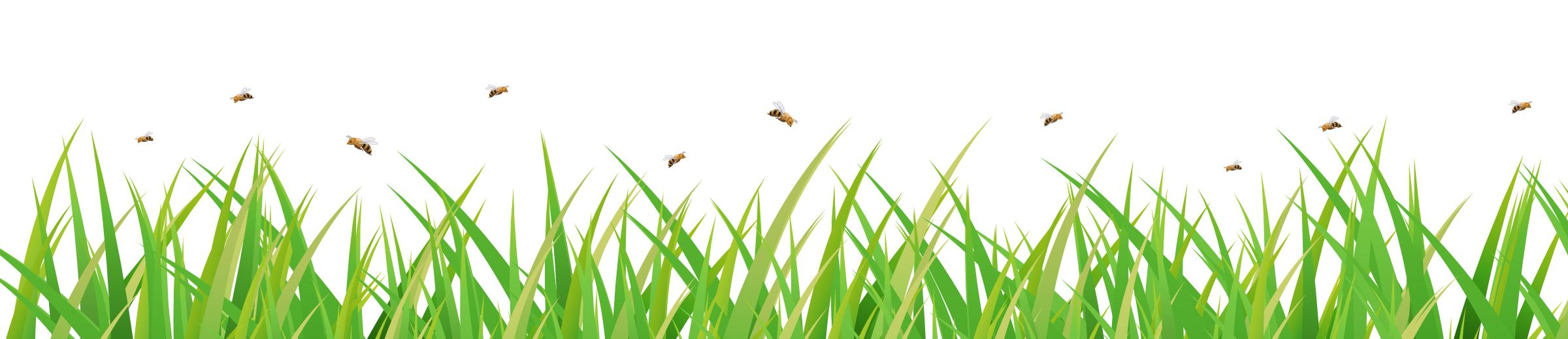 Bees Flying Above Grass Graphic